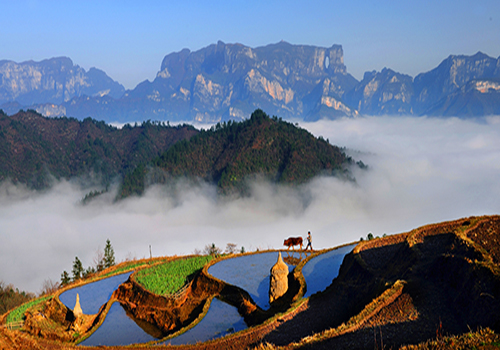 Travel  Popular Destinations:Top 10 attractions in Hunan, China