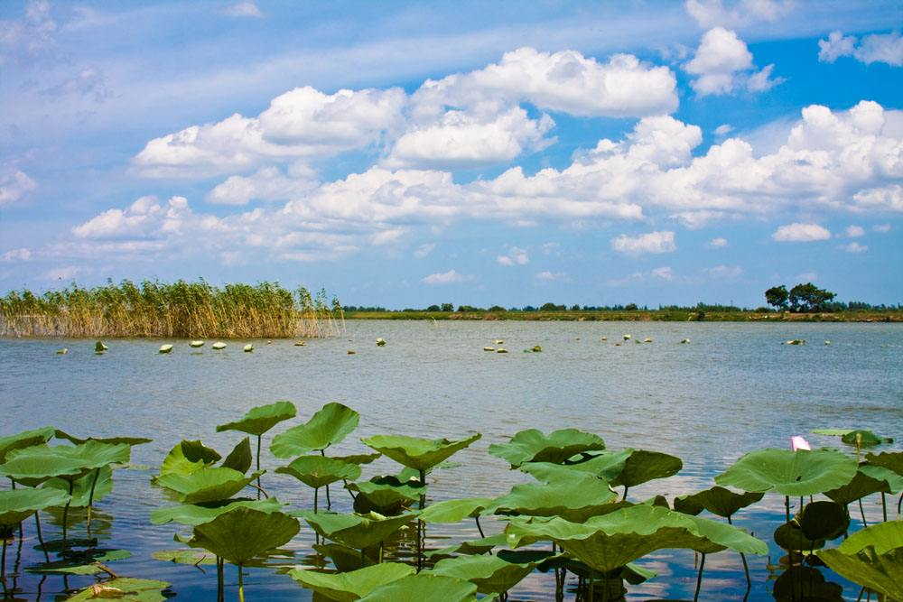 First China Dongting Lake Eco-culture Tourism Festival