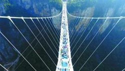 Day Classic Tour for Longest Glass Bridge and Yellow Dragon Cave